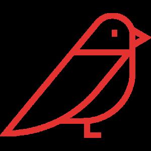 bird.3.